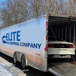 Snowbirds Transport with an Elite Car Shipping Company